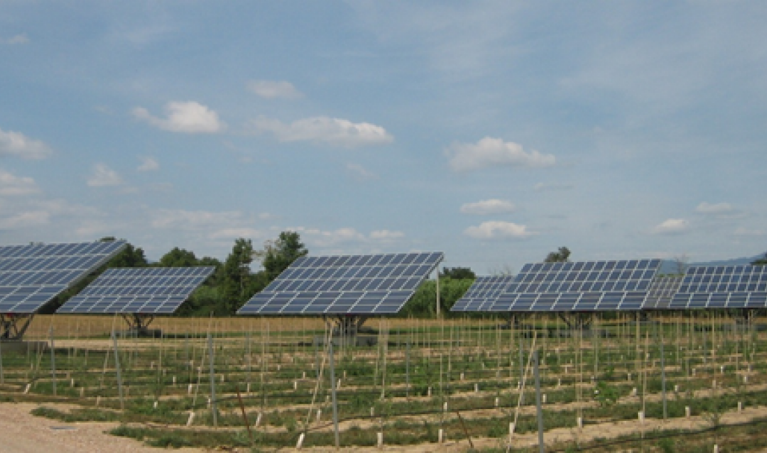 """Parc solar fotovoltaic """"Cabanes"""" amb una potència de 100 KW realitzada amb seguidors solars i situada a la població de Cabanes. (Girona)"""